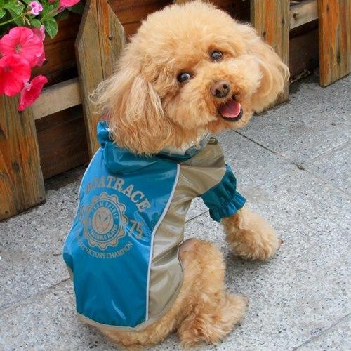 Pršiplášte pre psov