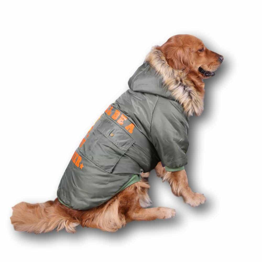 accf056d98ba 239 Bunda SOLDIER khaki - Oblečenie pre psov - PSISHOP.SK